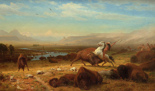Herd Of Horses Wall Art - Painting - The Last Of The Buffalo by Bierstadt Albert