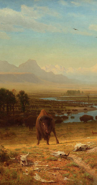 Herd Of Horses Wall Art - Painting - The Last Of The Buffalo-detail-2 by Albert Bierstadt