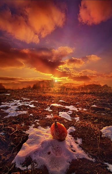 Photograph - The Last Pumpkin by Phil Koch