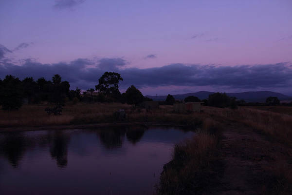 Photograph - The Last Rays Of Light Yarra Glen 26-01-2015 by Bert Ernie