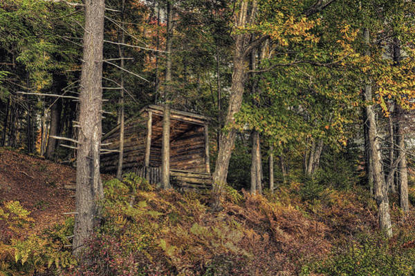 Photograph - The Lean-to In Autumn by David Patterson