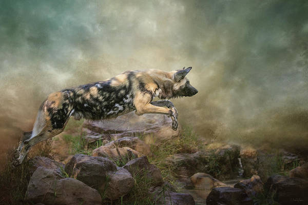 Digital Art - The Leap by Nicole Wilde