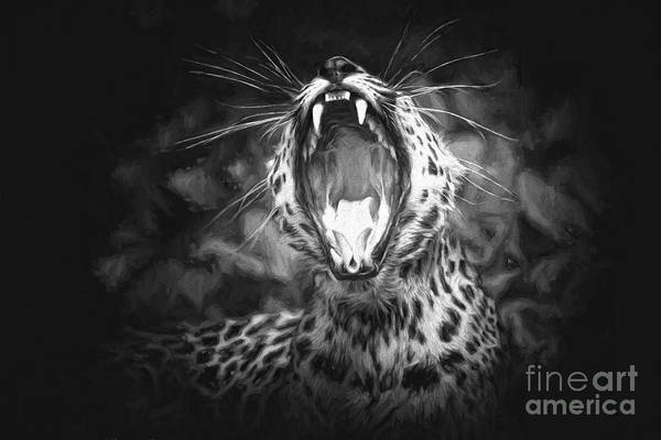 Photograph - The Leopard's Tongue Rolling Roar II by Mary Lou Chmura