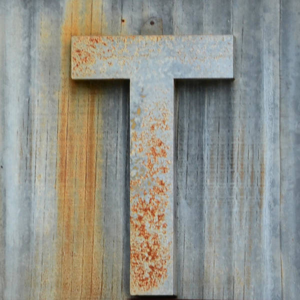 Wall Art - Photograph - The Letter T by Nikki Marie Smith