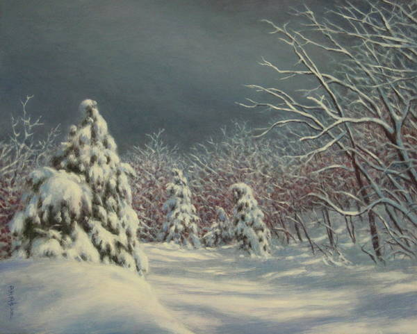 Wall Art - Painting - The Light After The Storm by Barry DeBaun