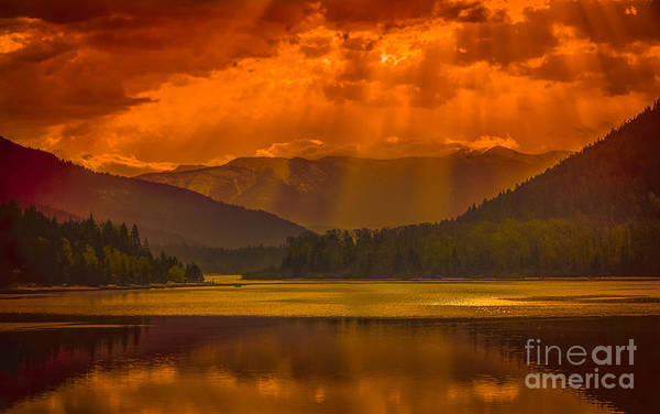 Nelson Bc Photograph - The Light  by Joy McAdams
