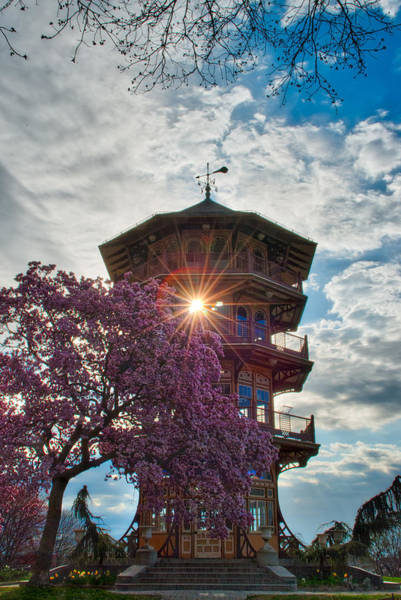 Photograph - The Light Through The Pagoda by Mark Dodd