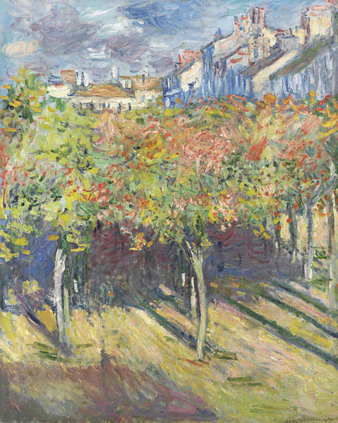 Painting - The Lindens Of Poissy  by Claude Monet
