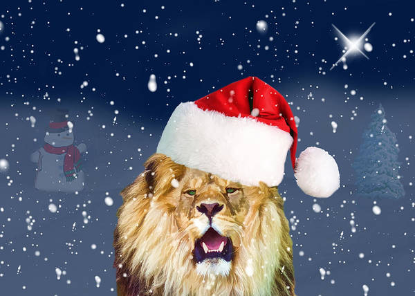 Cat In The Hat Wall Art - Photograph - The Lion In Winter by Delores Knowles