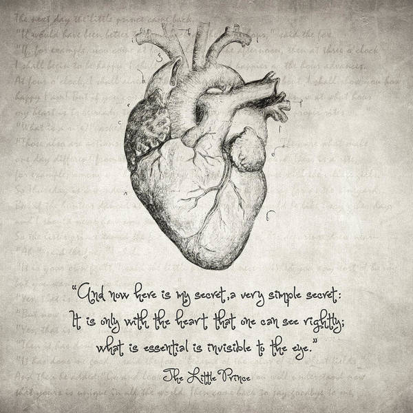 Wall Art - Drawing - The Little Prince Quote by Zapista Zapista