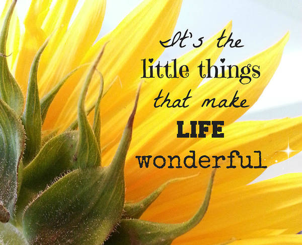 Little Things Photograph - The Little Things by Inspired Arts