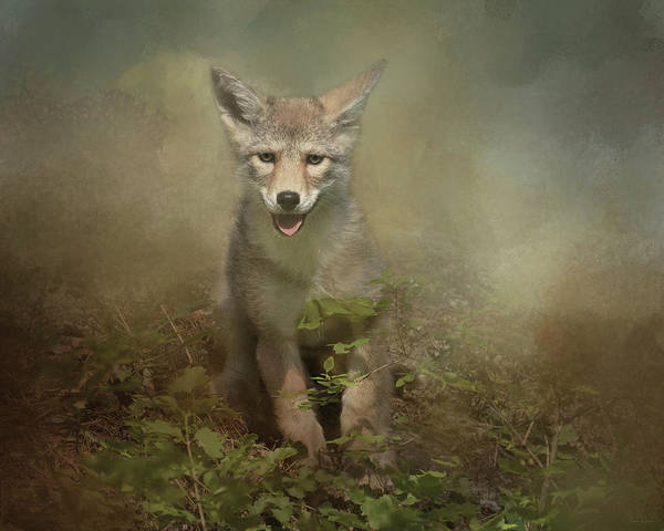 Digital Art - The Littlest Pack Member by Nicole Wilde