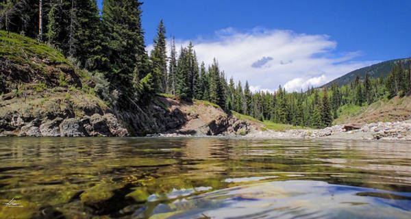 Photograph - The Livingstone River by Philip Rispin