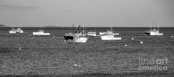 Photograph - The Lobster Fleet At Tenant Harbor by Olivier Le Queinec