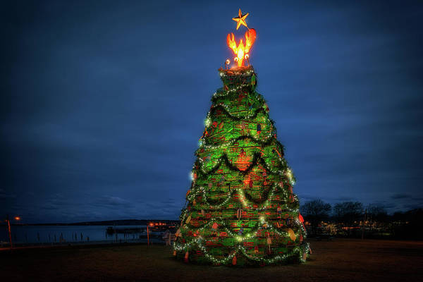 Photograph - The Lobster Trap Christmas Tree by Rick Berk
