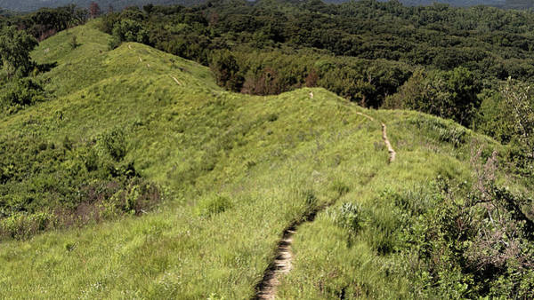 Photograph - The Loess Hills by Susan Rissi Tregoning