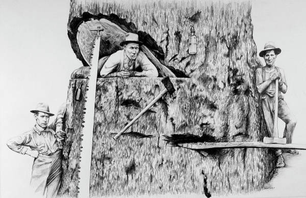 Lumberjacks Drawing - The Loggers by James Deady