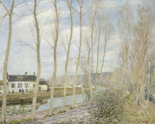 Painting - The Loing's Canal by Alfred Sisley
