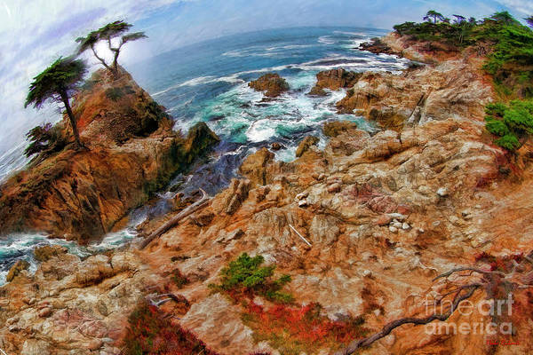 Photograph - The Lone Cypress And Stream by Blake Richards