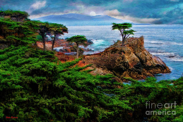 Photograph - The Lone Cypress  by Blake Richards