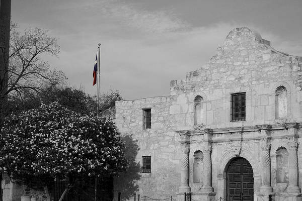 Photograph - The Lone Star by Dylan Punke
