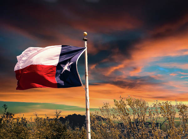 Photograph - The Lone Star Flag by Gaylon Yancy
