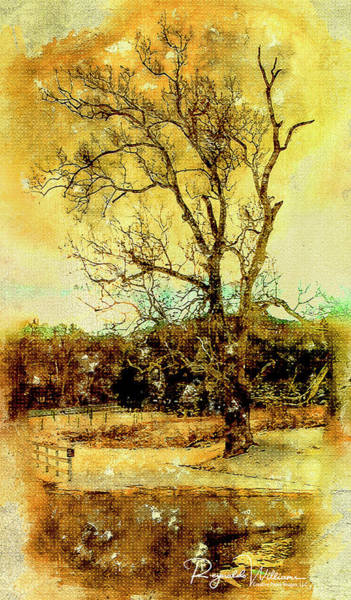 Photograph - The Lonely Tree by Reynaldo Williams