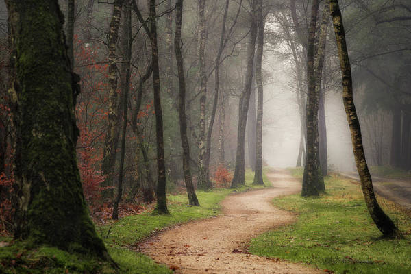 Wall Art - Photograph - The Long And Winding Road by Martin Podt