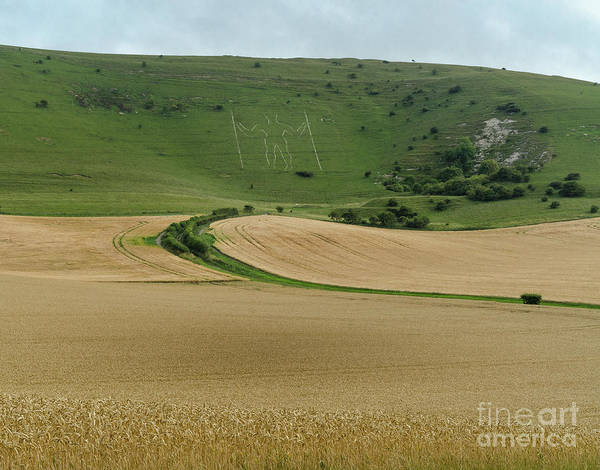 Photograph - The Long Man Of Wilmington by Perry Rodriguez
