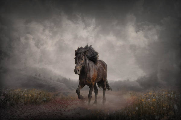 Atmospheric Digital Art - The Long Road Home by Jennifer Woodward