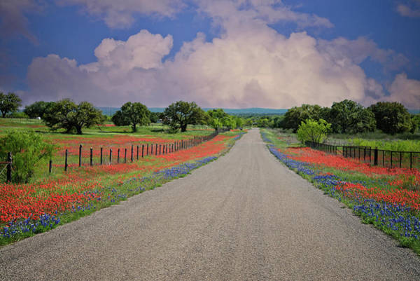 Photograph - The Long Road Home by Lynn Bauer