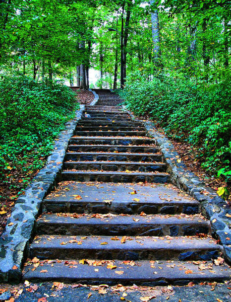 Ardmore Photograph - The Long Stone Steps At Miller Park by Deborah Willard