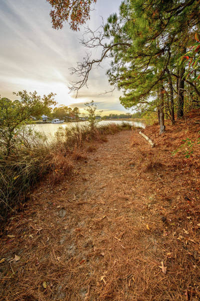 Photograph - The Long Trail Home by Michael Scott