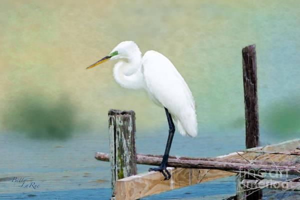 Egret Digital Art - The Lookout by Betty LaRue