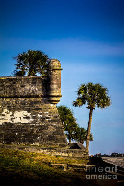 St Augustine Photograph - The Lookout by Marvin Spates
