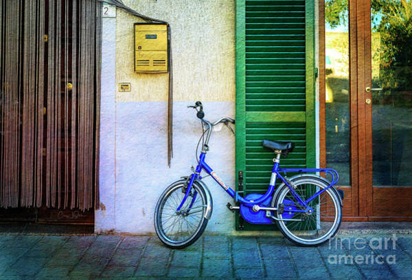 Photograph - The Lory Bicycle by Craig J Satterlee