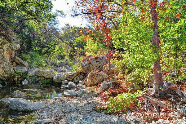 Lost River State Park Wall Art - Photograph - The Lost Maples by Savannah Gibbs