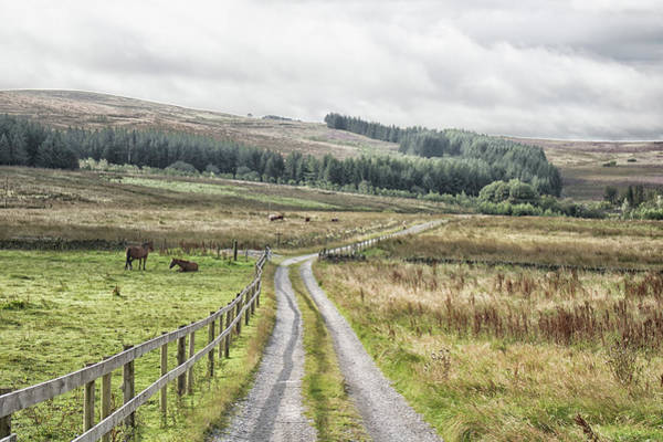 Peak District National Park Photograph - The Lost Road by Martin Newman