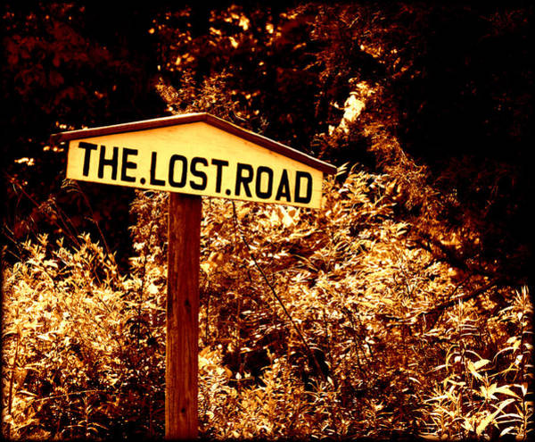 Photograph - The Lost Road by Susie Weaver