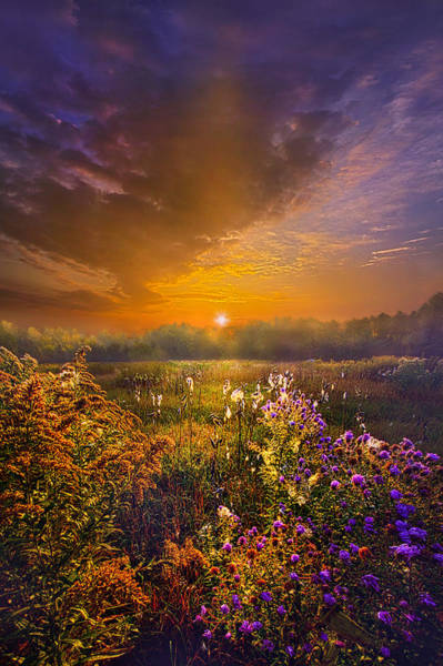 Photograph - The Love That Lights My Way by Phil Koch