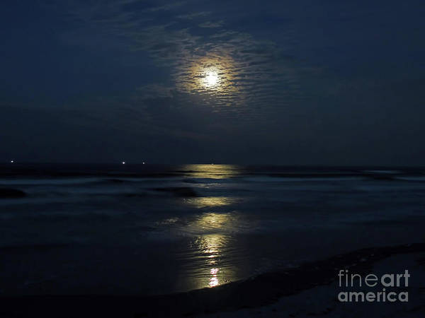 Photograph - The Magic Of The Supermoon by D Hackett