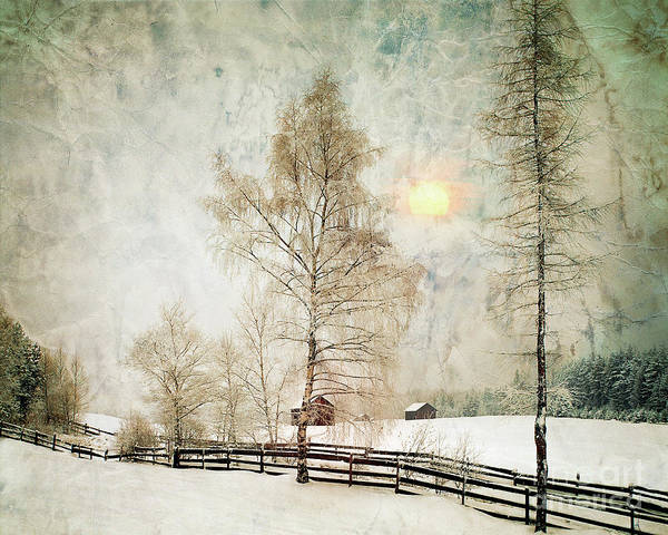 The Magic Of Winter Art Print