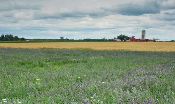 Photograph - Farming Landscape by Nick Mares