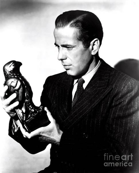 Wall Art - Photograph - The Maltese Falcon by Pd