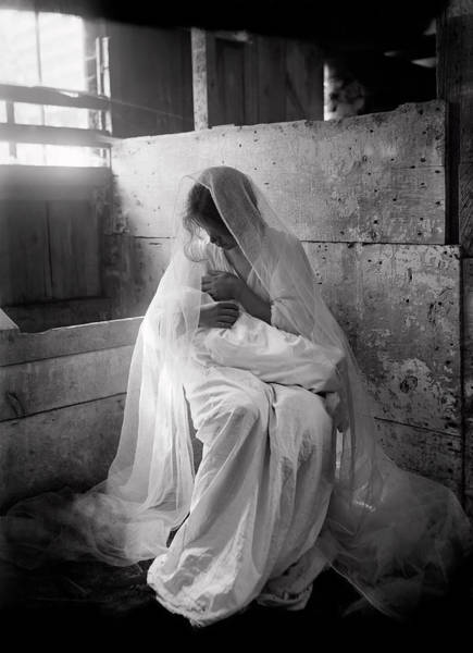 Wall Art - Photograph - The Manger 1901 by Daniel Hagerman