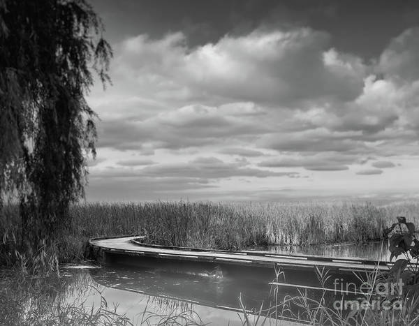 Photograph - The Marsh-in Black And White by Janal Koenig