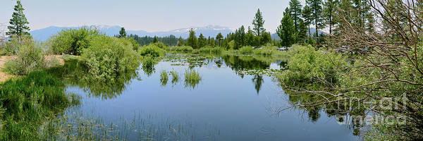 Photograph - The Marsh by Joe Lach