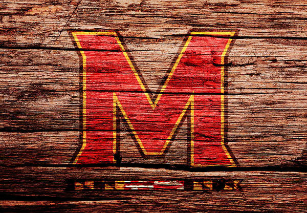 Maryland Mixed Media - The Maryland Terrapins 1a by Brian Reaves