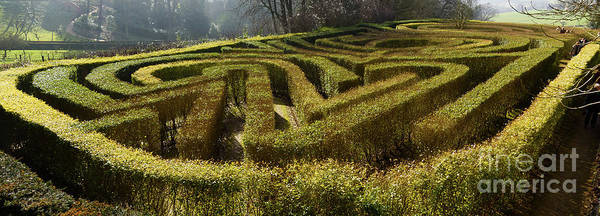 Photograph - The Maze by Colin Rayner