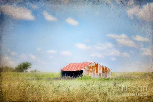 Shed Digital Art - The Meeting Place by Betty LaRue